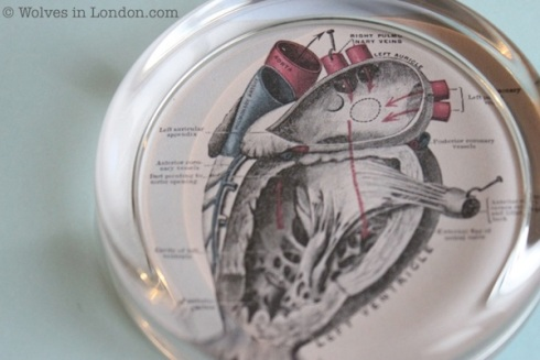 Make a Valentine's heart paperweight