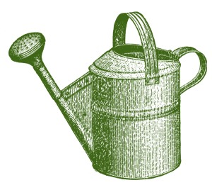 Vintage watering can image