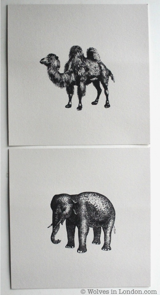 Elephant card and camel card from Wolves in London