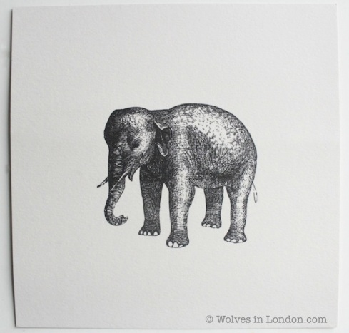 Elephant card from Wolves in London