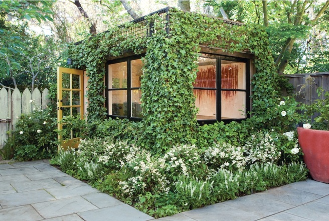 Ivy covered shed