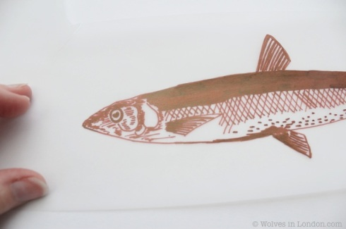 acetate design of a fish
