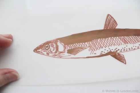 acetate design of a fish