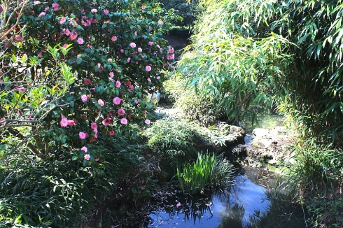 Japanese garden, Peckham Rye Park