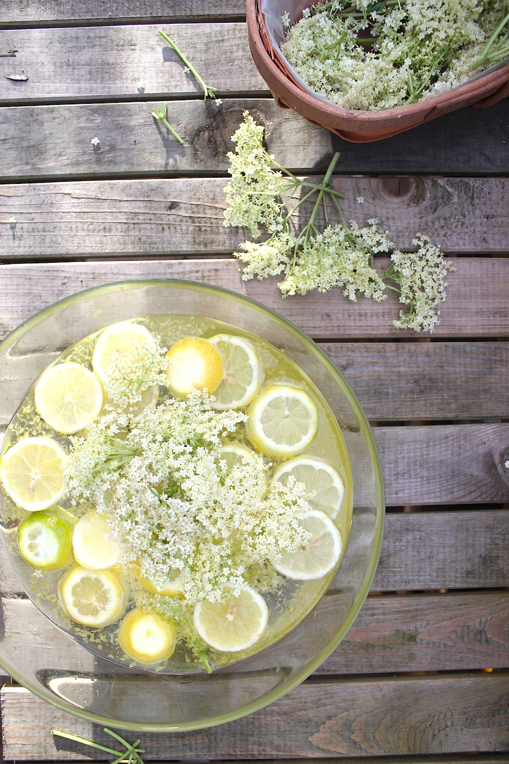 DIY Elderflower Cordial Recipes — Dishmaps