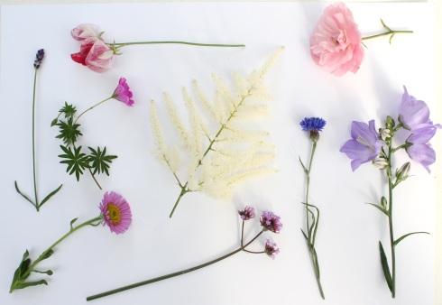 July garden moodboard