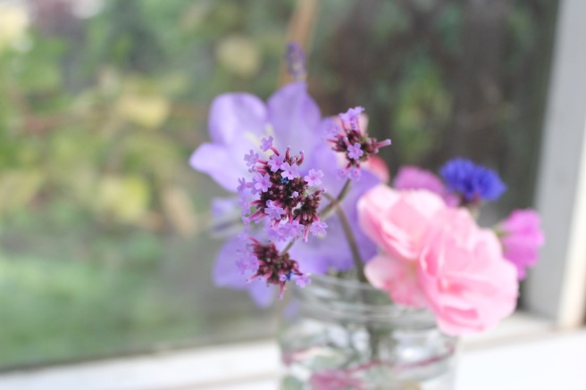 Verbena in a jam jar
