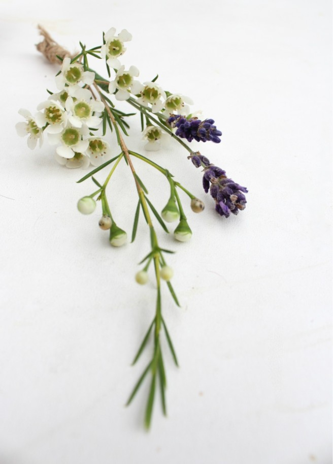 Simple wedding buttonhole with lavender and wax flowers
