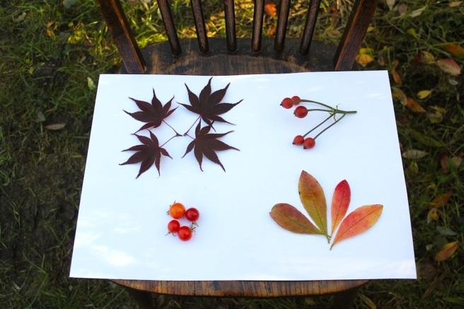 Garden moodboard November