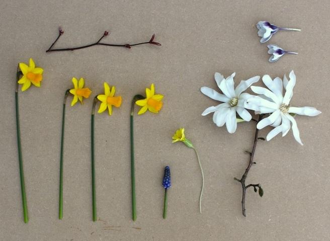 March garden moodboard