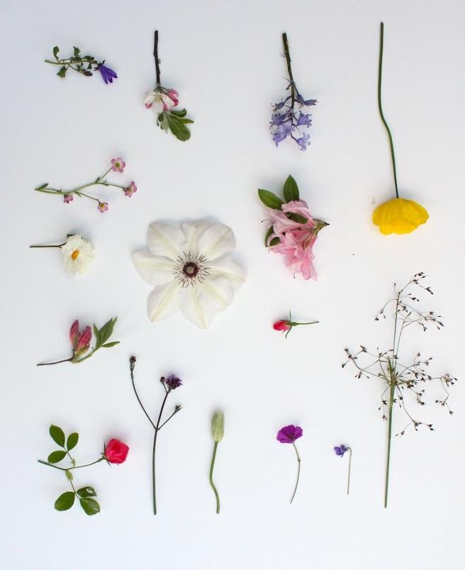 Garden moodboard May