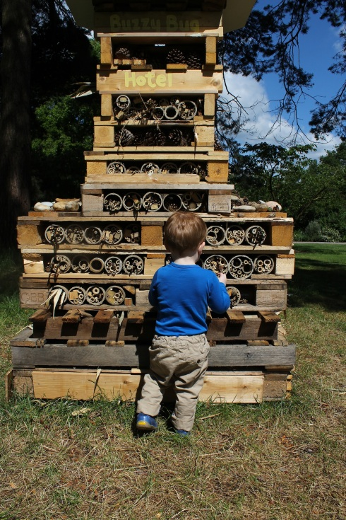 Bug hotel at Wisley | Wolves in London