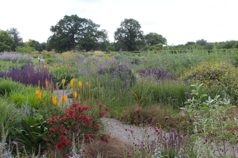 Drift planting at Wisley | Wolves in London