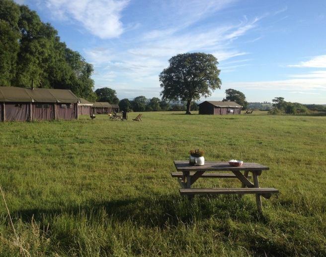 View at Featherdown farm | Wolves in London