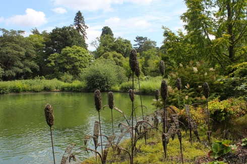 RHS Wisley | Wolves in London