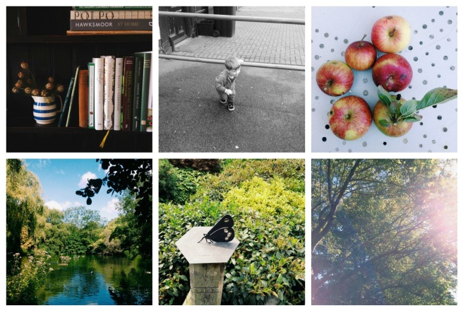 August break photo collage | Wolves in London