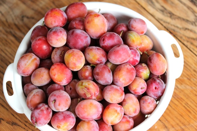 Spicy plum chutney recipe | Wolves in London