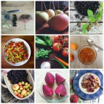 Grow, forage, cook August round-up