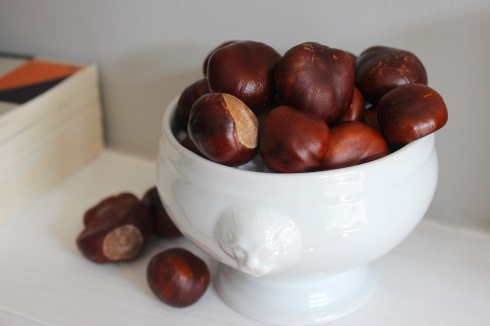 Conkers in soup bowl | Wolves in London