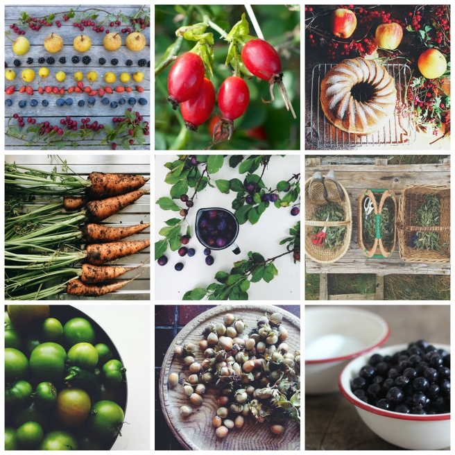 Grow, forage, cook September roundup