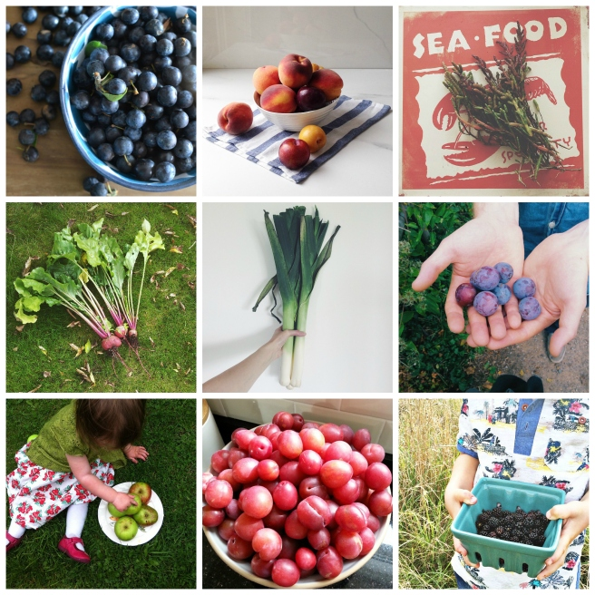 Grow, forage, cook: September round-up
