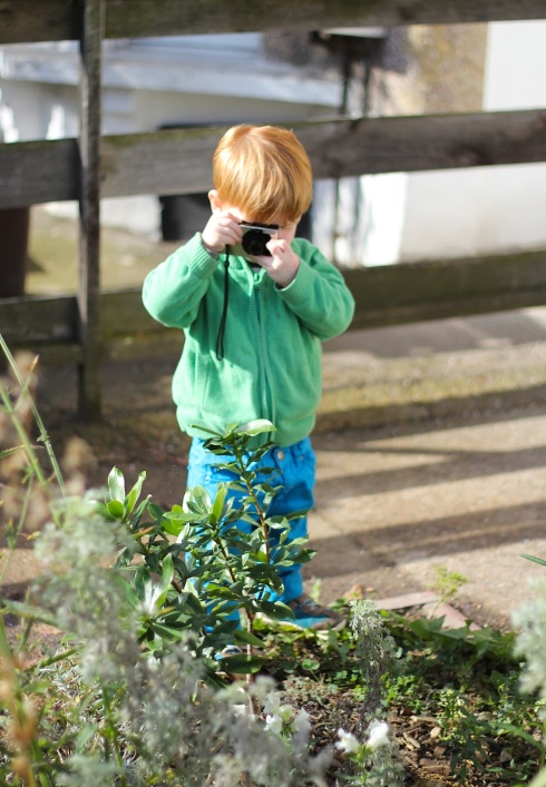 Toddler photographing | Wolves in London