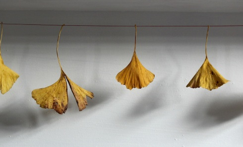Ginkgo garland | Wolves in London