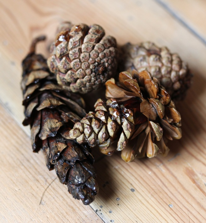 Pine cone firelighters in a Christmas hamper
