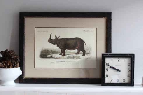Rhino illustration on the mantelpiece | Wolves in London