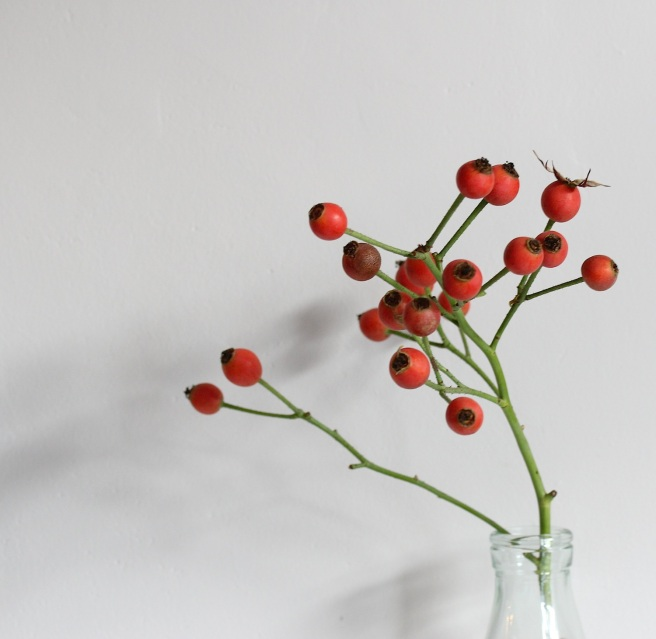 Rosehips on the mantelpiece | Wolves in London