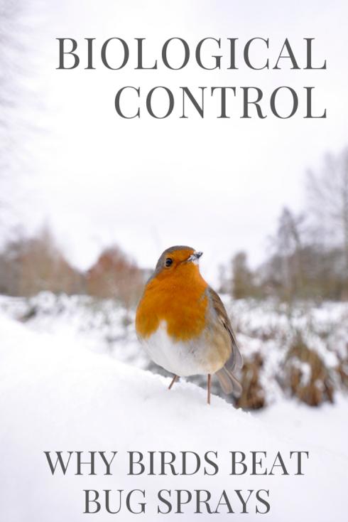Biological control: why birds beat bug sprays