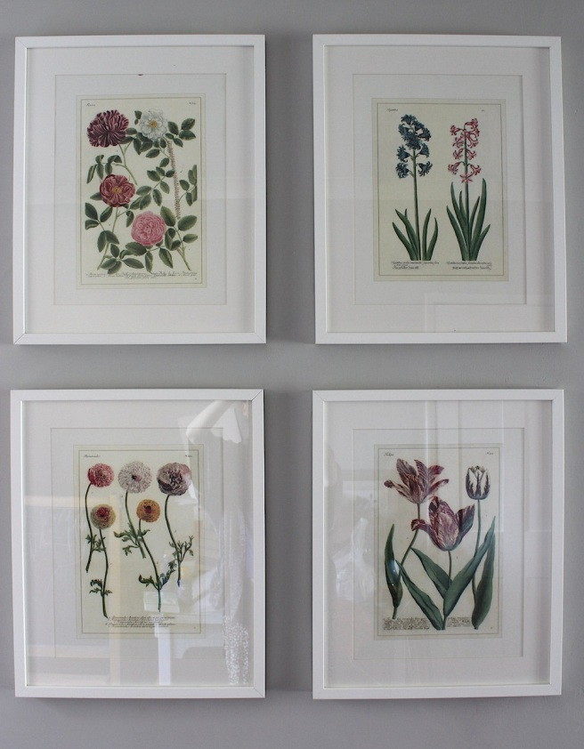 Botanical wall art
