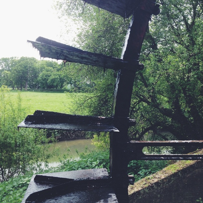 Waterwheel at Painshill Park