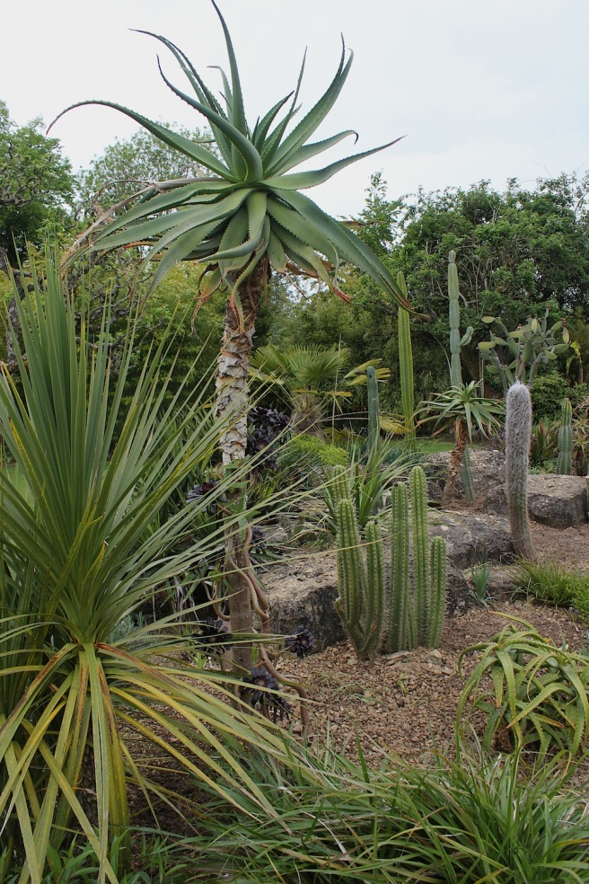 Tropical planting at Cotswold Wildlife Park