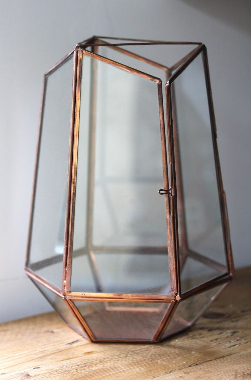 Copper terrarium planting ideas | Wolves in London