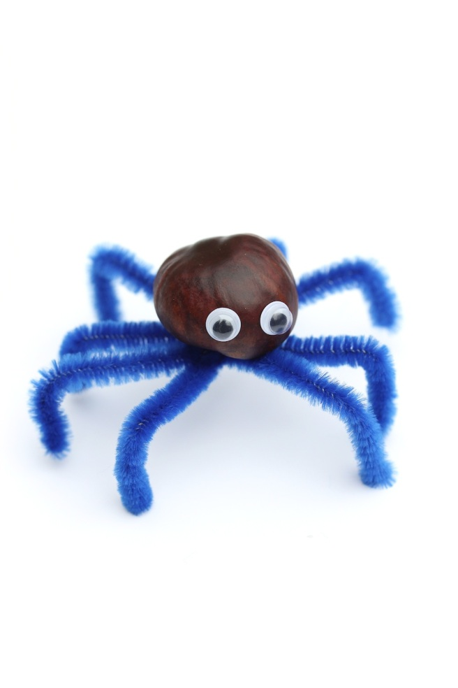 Finished conker spider