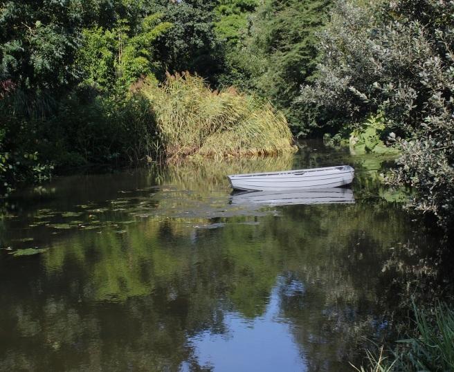 Beth Chatto bog garden