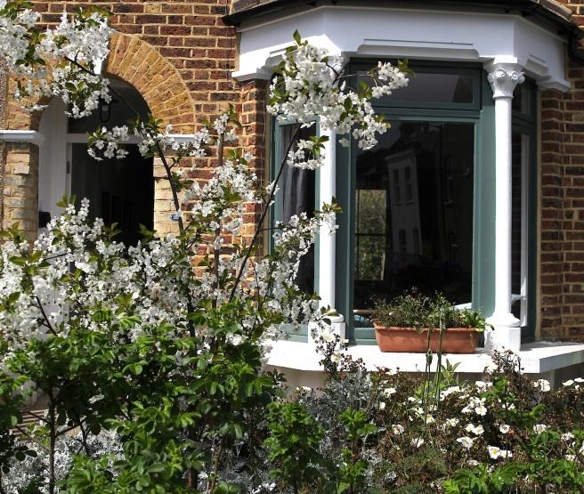 London front garden in Spring
