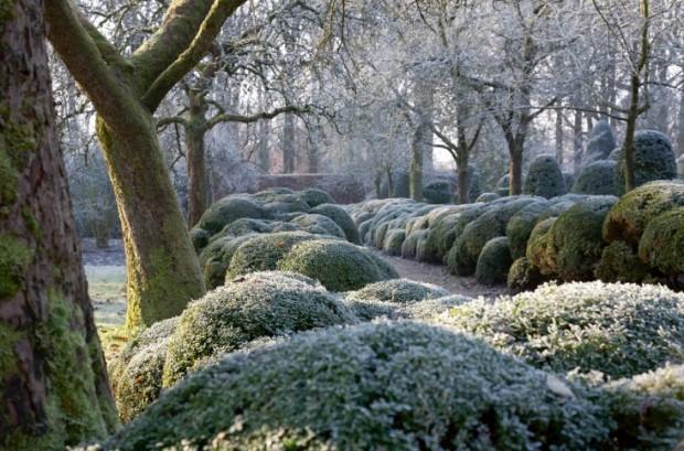 Jacques Wirtz's family garden